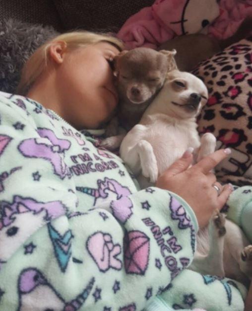 Ich will noch nicht aufstehen! Was macht ihr das Wochenende so? #pebbles #Schlafen #goodmorning #hund #lenanitro